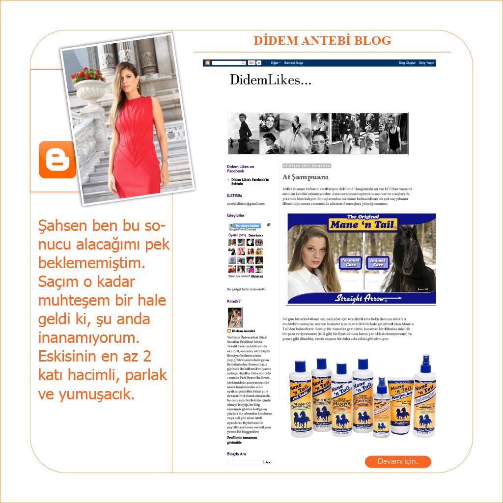 Didem Antebi Blog